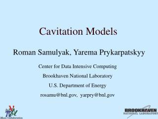 Cavitation Models