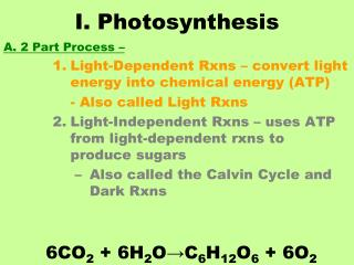 I. Photosynthesis