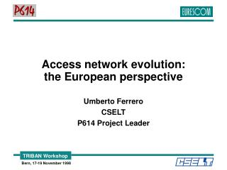 Access network evolution: the European perspective