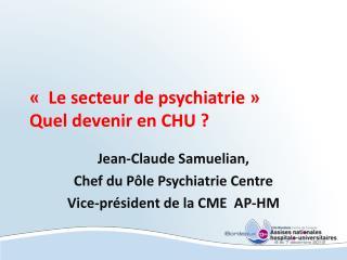 « Le secteur de psychiatrie» Quel devenir en CHU?