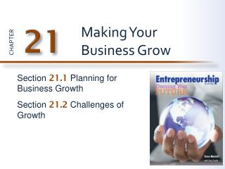 Making Your Business Grow