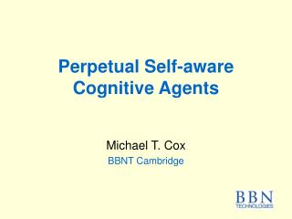 Perpetual Self-aware Cognitive Agents