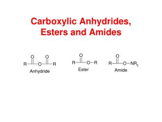 Carboxylic Anhydrides,  Esters and Amides