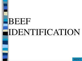 BEEF IDENTIFICATION
