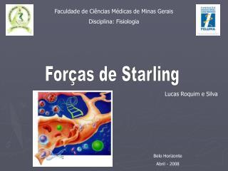 Faculdade de Ciências Médicas de Minas Gerais Disciplina: Fisiologia