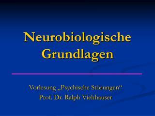Neurobiologische Grundlagen