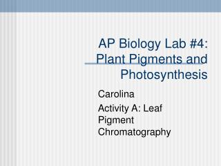 AP Biology Lab #4: Plant Pigments and Photosynthesis