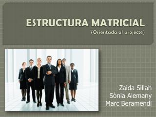 ESTRUCTURA MATRICIAL (Orientada al  projecte )