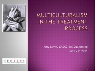 Multiculturalism in the treatment process