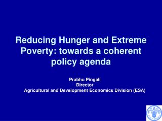 Reducing Hunger and Extreme Poverty: towards a coherent policy agenda