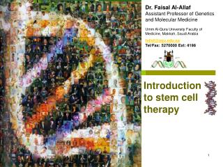 Dr. Faisal Al-Allaf Assistant Professor of Genetics and Molecular Medicine
