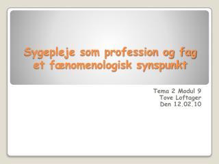 Sygepleje som profession og fag et fænomenologisk synspunkt