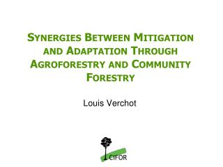 Synergies Between Mitigation and Adaptation Through Agroforestry and Community Forestry