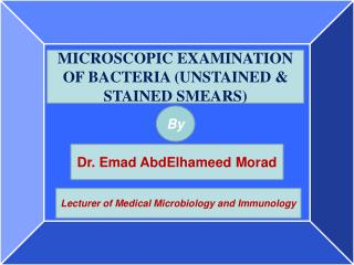 MICROSCOPIC EXAMINATION OF BACTERIA (UNSTAINED & STAINED SMEARS)