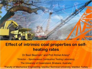 Effect of intrinsic coal properties on self-heating rates