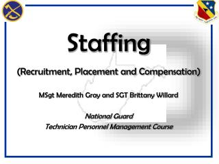Staffing (Recruitment, Placement and Compensation)