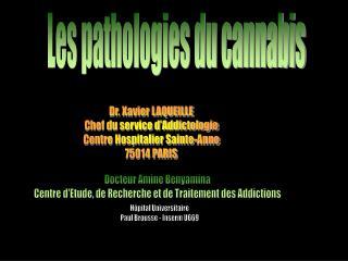 Les pathologies du cannabis