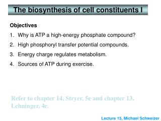 The biosynthesis of cell constituents I