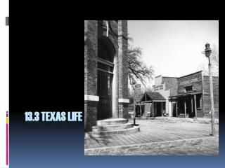13.3 Texas Life