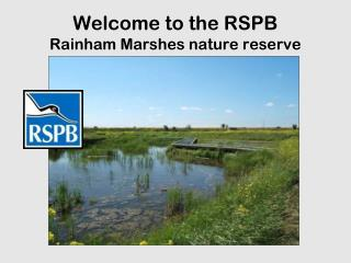 Welcome to the RSPB  Rainham Marshes nature reserve