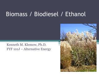 Biomass / Biodiesel / Ethanol