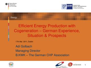 Efficient Energy Production with Cogeneration – German Experience, Situation & Prospects