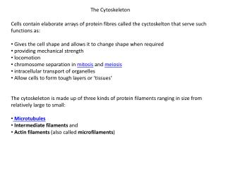The Cytoskeleton