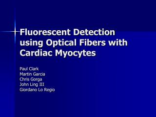 Fluorescent Detection using Optical Fibers with Cardiac Myocytes