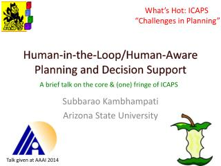Human-in-the-Loop/Human-Aware Planning and Decision Support