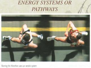 ENERGY SYSTEMS OR PATHWAYS