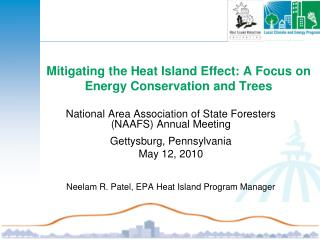 Mitigating the Heat Island Effect: A Focus on Energy Conservation and Trees