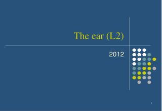The ear (L2)