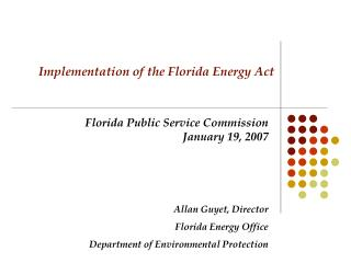 Implementation of the Florida Energy Act