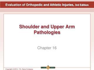 Shoulder and Upper Arm Pathologies
