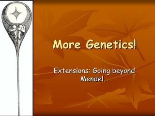 More Genetics!