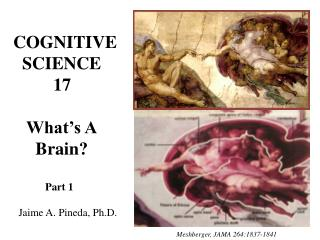 COGNITIVE   SCIENCE          17    What's A      Brain?             Part 1