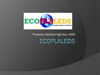 ECOPLALEDS