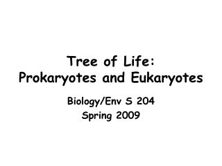 Tree of Life: Prokaryotes and Eukaryotes