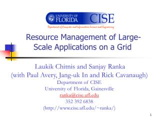 Resource Management of Large-Scale Applications on a Grid