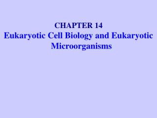 CHAPTER 14 Eukaryotic Cell Biology and Eukaryotic Microorganisms