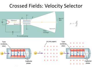Crossed Fields: Velocity Selector