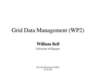 Grid Data Management (WP2)
