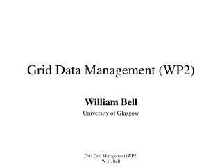 Grid Data Management (WP2)