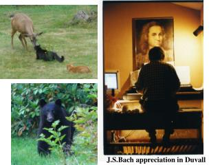 J.S.Bach appreciation in Duvall