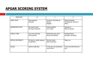 APGAR SCORING SYSTEM