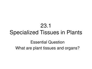 23.1 Specialized Tissues in Plants