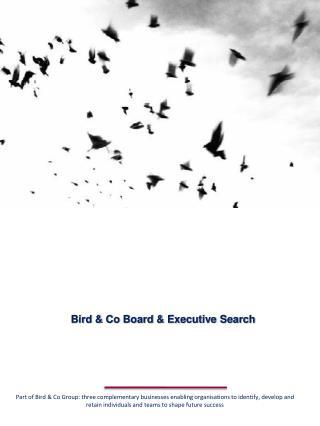 Bird & Co Board & Executive Search