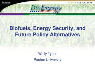 Biofuels, Energy Security, and Future Policy Alternatives