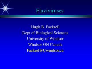 Flaviviruses