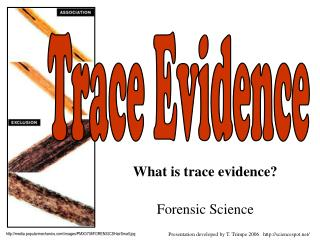 What is trace evidence? Forensic Science